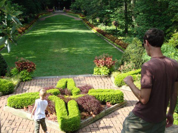 The Secret To Fertility How To Improve Backyard Soil