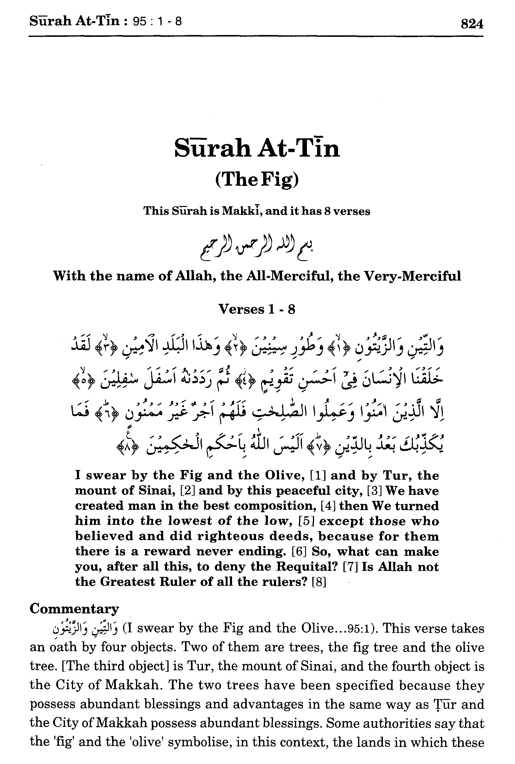 6 MEANING OF SURAH TIN
