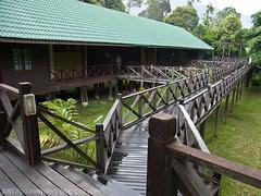 kapur and keruing rest house at maliau basin R0011984 copy