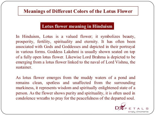 20 Meaning Of Lotus Flower In Buddhism Buddhism Flower Meaning