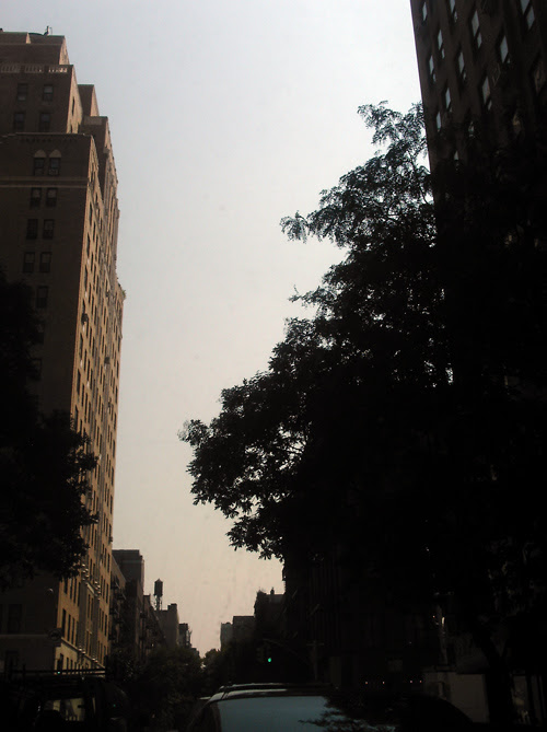 canyon, West 17th Street