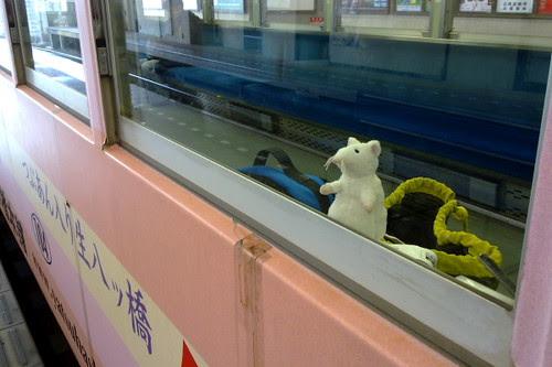 Taking the tram to Arashiyama