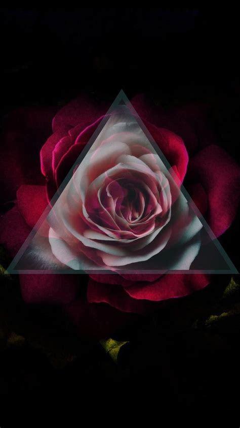 iphone wallpaper gothic rose red rnsie vakgyasyi