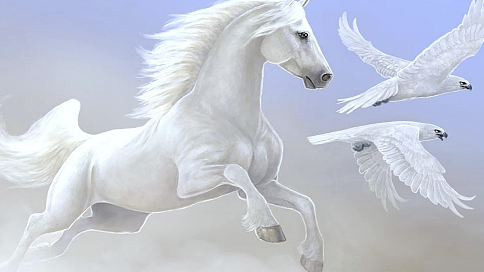 7 Horse Hd Wallpapers 1920x1080 Nosirix