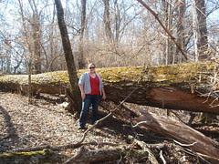 kristin, with tree