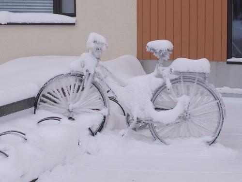 bikeCovered