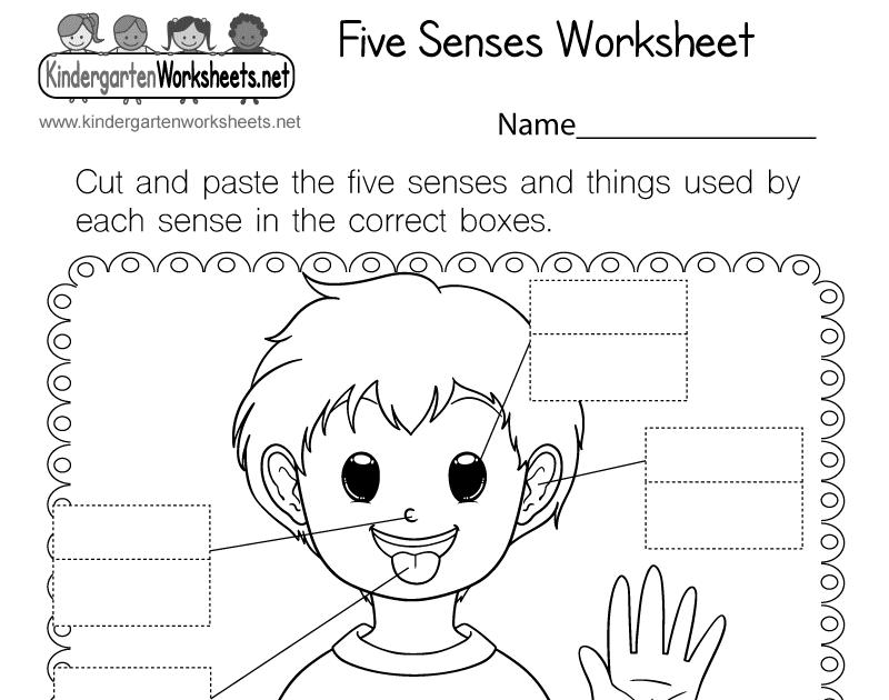 five sense worksheet: NEW 483 FIVE SENSES WORKSHEETS WITH PICTURES