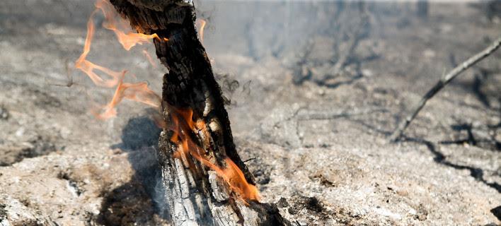 Πολύ υψηλός κίνδυνος πυρκαγιάς την Κυριακή -Σε ποιες περιοχές