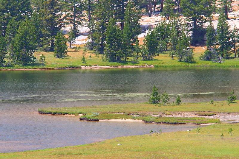IMG_8927 Emeric Lake, Vogelsang to Merced Lake via Fletcher Creek