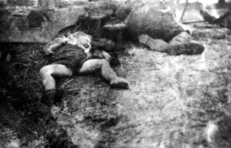 Картинки по запросу волынская резня