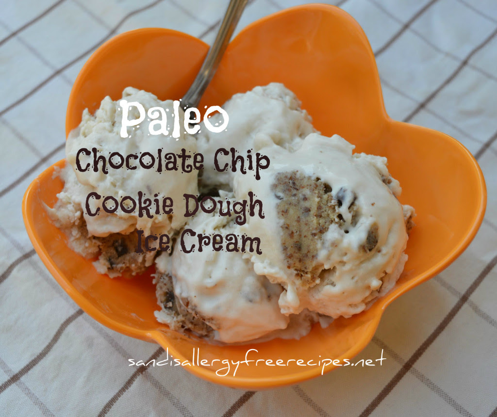 Paleo Chocolate Chip Dough Ice-Cream