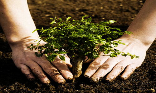 Soil types and its properties, CBSE Notes, NCERT Notes,