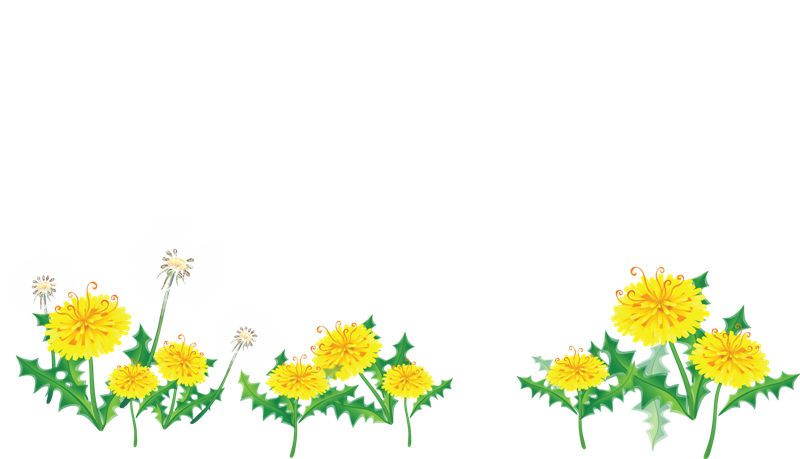 Free Flower Border Png Download Free Clip Art Free Clip Art On