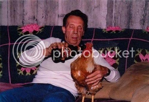 photo Chicken Drinking Beer_zpsrdfx85dw.jpg
