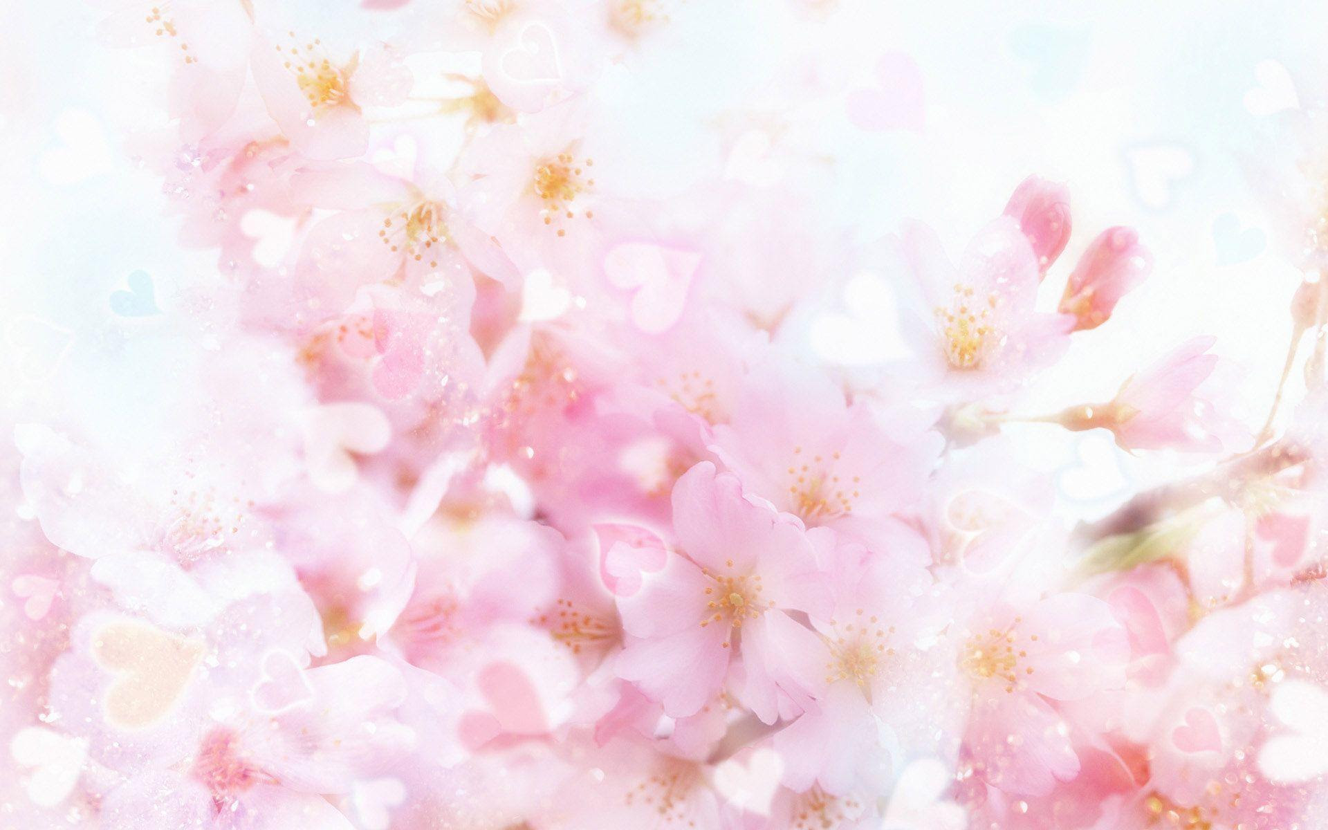 Pink Flower Wallpaper Backgrounds - Wallpaper Cave