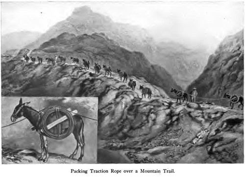 Packing traction rope over a mountain trail