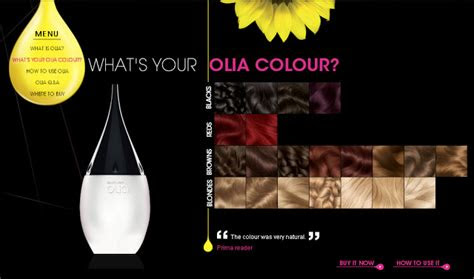 scott cornwall hair expert garnier olia oil based colourant launches
