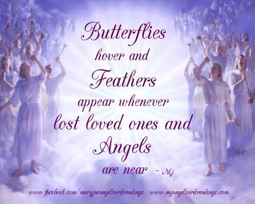 Butterflies Hover And Feathers Appear Whenever Lost Loved Ones And