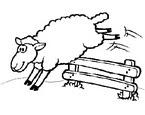 Güvenli Koyun Boyama Oyunu Oyna