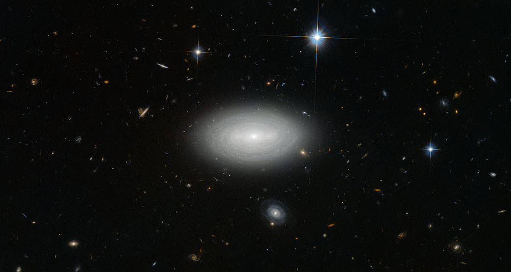 Three local stars and a galaxy