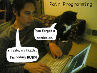 Pair Programming for Ailurophiles
