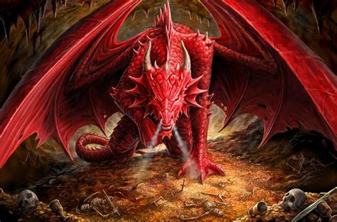 dragon hd wallpapers backgrounds wallpaper abyss
