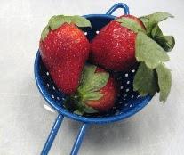 strawberriesSMALL