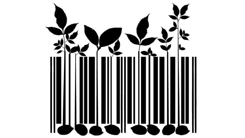 Resultado de imagen para ley de semillas
