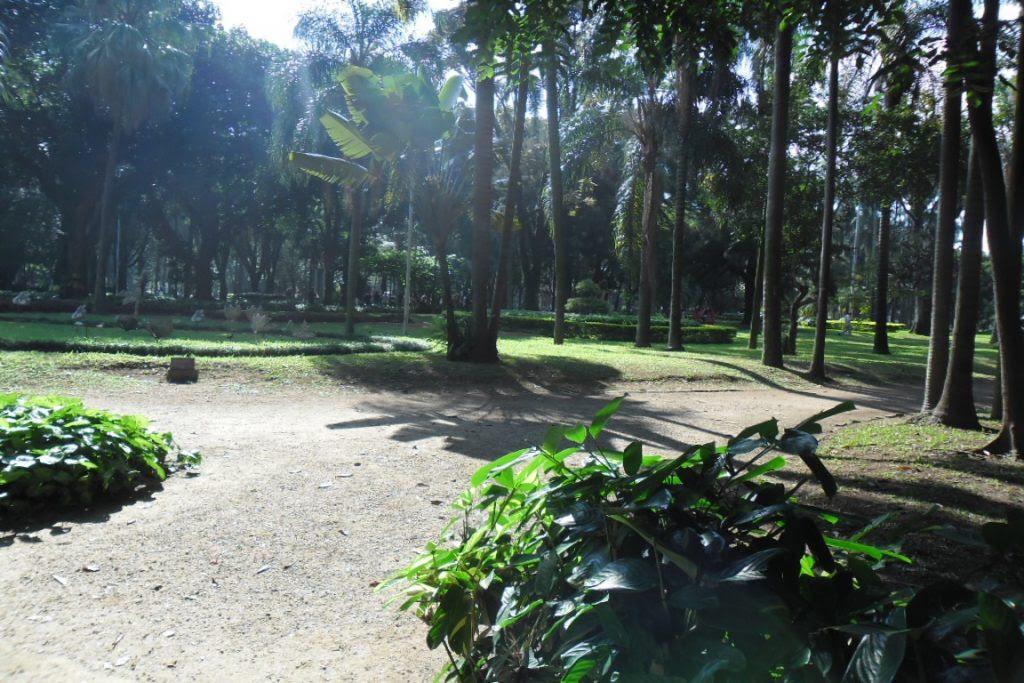 O Parque Jardim da Luz está entre as 15 unidades que serão cedidas à iniciativa privada. Foto: Milton Jung/Flickr.