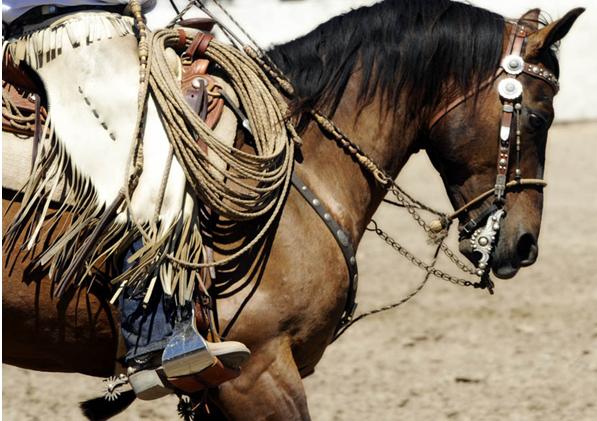 Eagle Brand Cowboy Tack