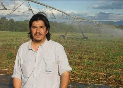 Jorge Gómez, asistente de producción de campo, en un lote de riego por aspersión.