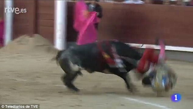 The bullfighter was tossed into the air and then trampled on by the huge 1,000lb animal