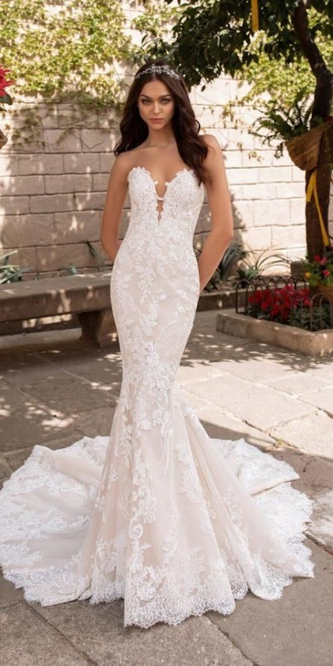 19+ Mermaid Bridal Dress Online Shop