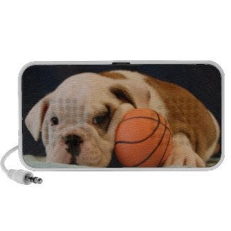 Basketball Puppy English Bulldog doodle