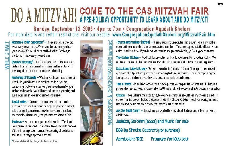 Mitzvah Fair write up