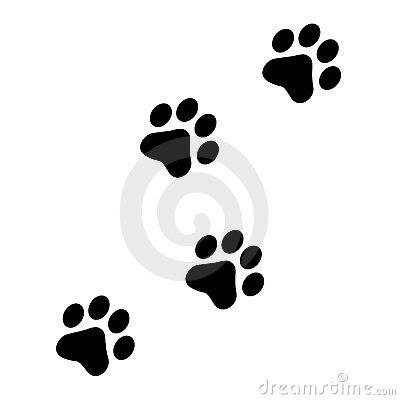 dog foot prints cartoon  cartoon network