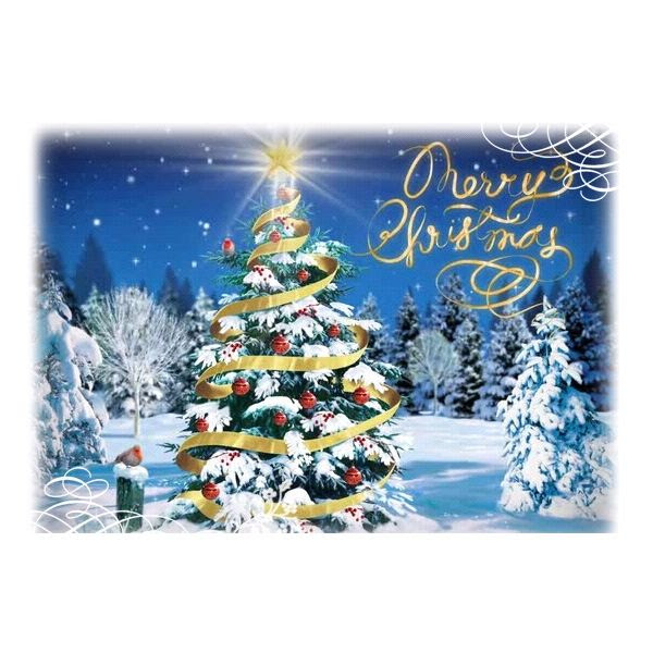 Christmas greetings email christmas pix winter themed christmas cards for facebook email and m4hsunfo