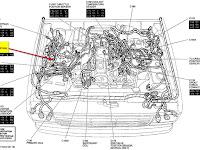 1995 Ford F 150 302 V 8 Engine Diagram