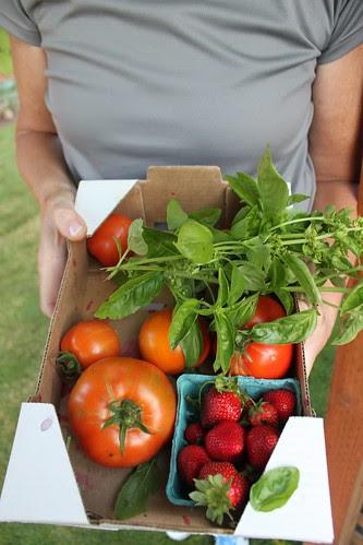 backyard mom and harvest