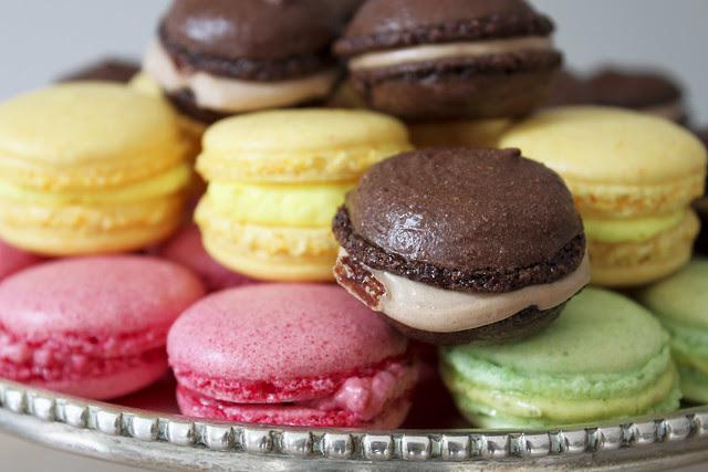 Collection Macaron