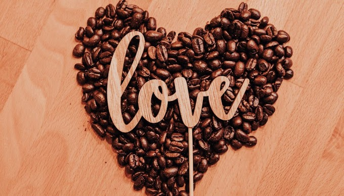 Coffee Lovers Recipes – Have Fun!