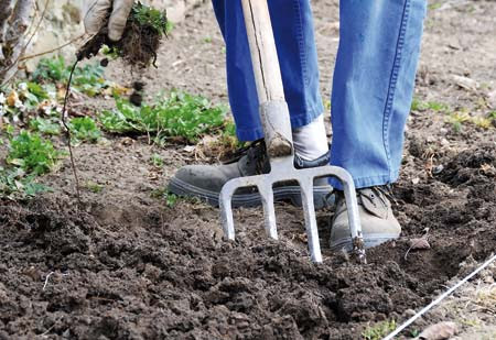 Εργασίες για την καλλιέργεια της πατάτας