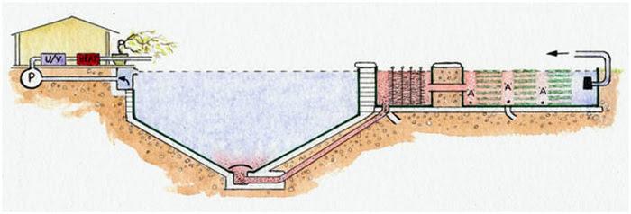 How To Build A Proper Koi Pond Koiknowledge