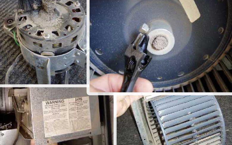 furnace blower motor wiring image 4