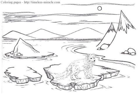 arctic coloring pages coloring page