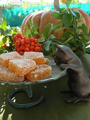 pâtes de fruits 2.jpg