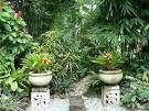 Tropical Garden,tropical Garden Design,tropical Garden Designs#8 ...