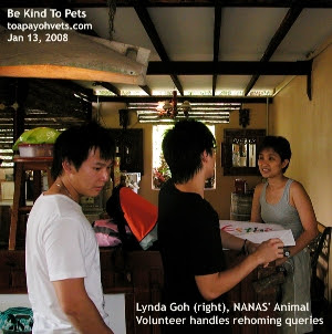 NANAS may be the last no-kill animal shelter for some dogs needing rehoming. Lynda Goh. Animal volunteer. Toa Payoh Vets