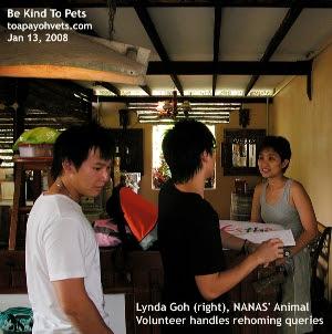 NANAS may be the last no-kill animal shelter for some dogs needing rehoming. Lynda Goh. Animal volunteer. Toa Payoh Vets