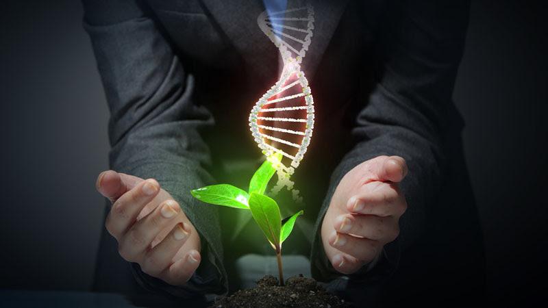natural sciences course_106450_large